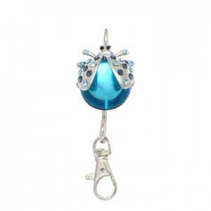 Blue Ladybird Keyfinder